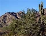 Arizona Drug Rehabilitation Photos