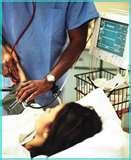 California Drug Rehabilitation Center | Drug Recovery Center Pictures